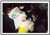 晃華学園中学校高等学校プレゼンシーン3